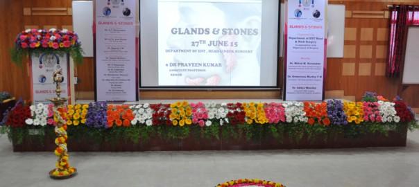 glands stones (1)