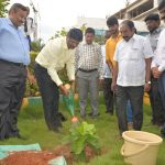world-environment-day-RRMCH6